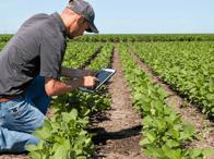 Farming-Tech-IPad